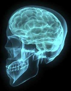 brain-001-1172516-639x394