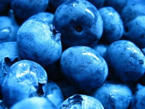 blueberries-opt