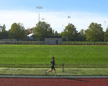 runner-1561817-640x480